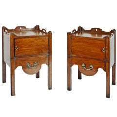 Pair of Early 19th Century Mahogany Cupboards