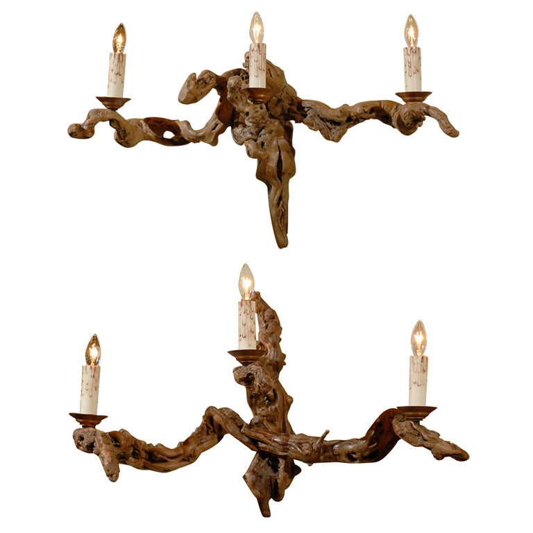 Ancient Wood Vine Sconces at 1stdibs