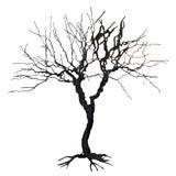 Wire Tree Sculpture by Pablo Avilla