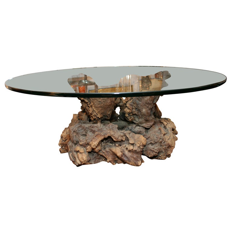 cypress root coffee table at 1stdibs
