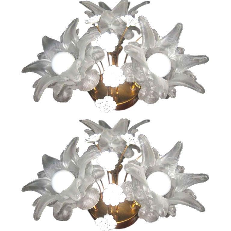 Pair of Glass & Brass Flower Sconces