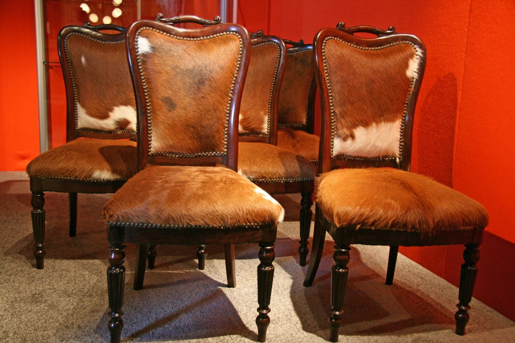 """Italian, 1840 Livornese """"English Makers"""" mahogany dining chairs.  With newly upholstered cow hide."""