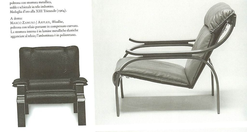 Pair of Marco Zanuso Armchairs in Leather for Arflex For Sale 1