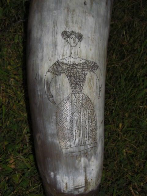 European 19th Century Scrimshaw Horn Vessel For Sale