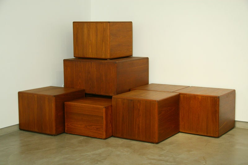 Exotic Wood Side Tables or Coffee Tables by Sergio Rodrigues 2