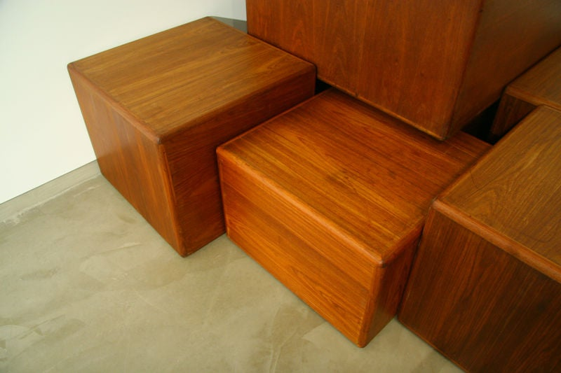 Exotic Wood Side Tables or Coffee Tables by Sergio Rodrigues 5