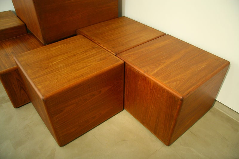 Exotic Wood Side Tables or Coffee Tables by Sergio Rodrigues 7