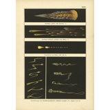 Comets Cosmos #3