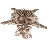 Antique Zebra Skin Rug