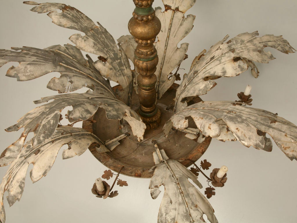 C 1900 1920 Large Exotic Italian Plant Form Chandelier At