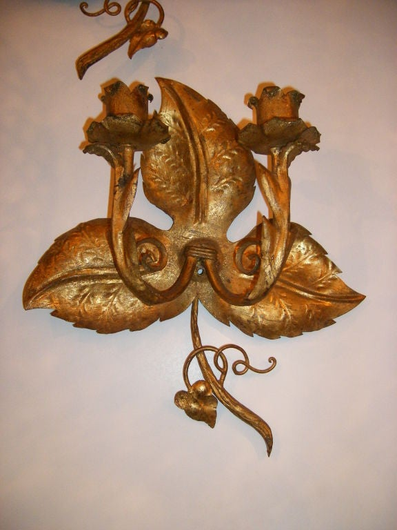 Wall Sconces With Grapes : Grape Vine Gilt Sconces For Sale at 1stdibs
