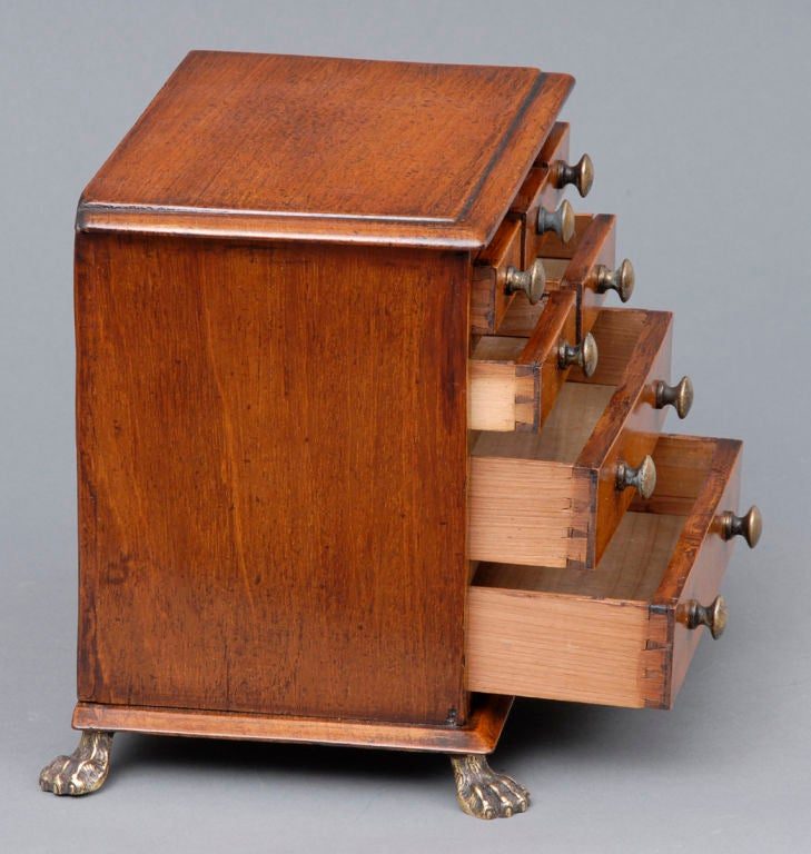 19th Century English Miniature Chest For Sale