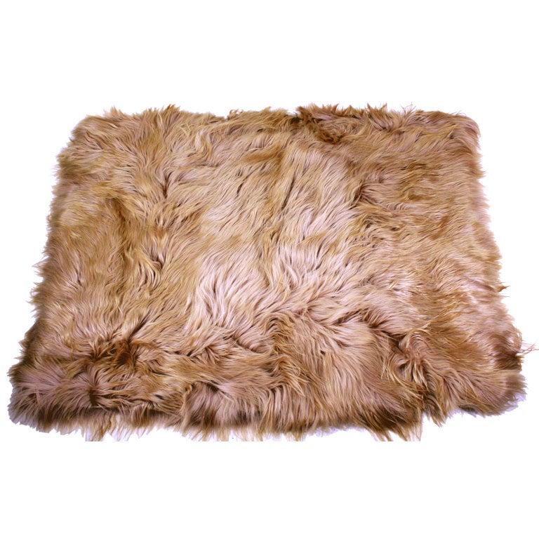 Home114 Kidassia Long Hair Goat Skin Rug At 1stdibs