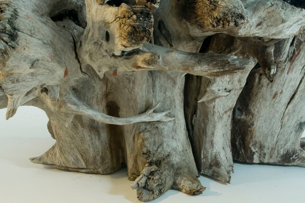 naturally weathered tree root table by charlie baker at