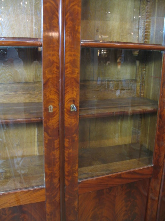 Louis Philippe Mahogany Bibliotheque For Sale 2