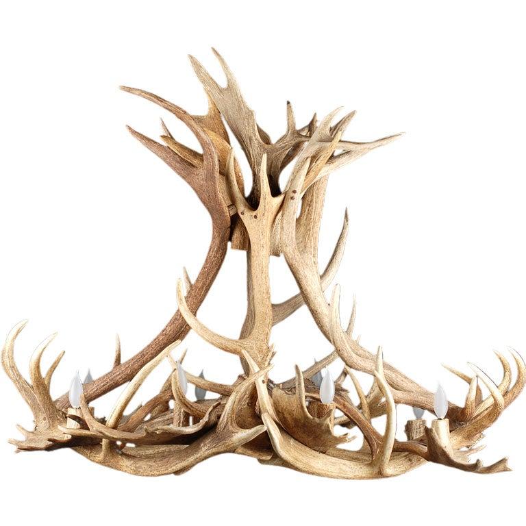 european antique deer and moose antler light fixture at 1stdibs. Black Bedroom Furniture Sets. Home Design Ideas