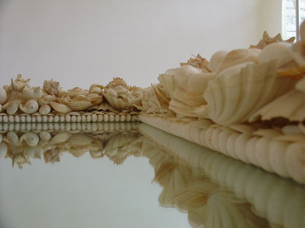 Shell Mirror 2