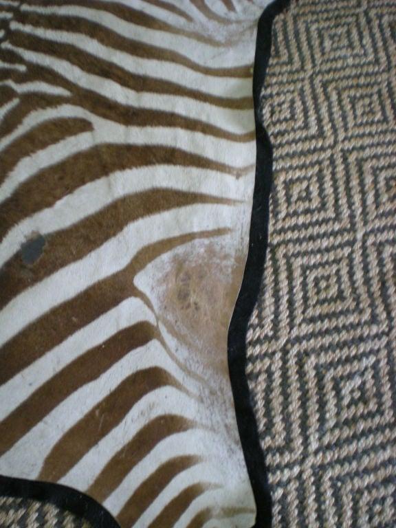 Vintage Zebra Rug 2