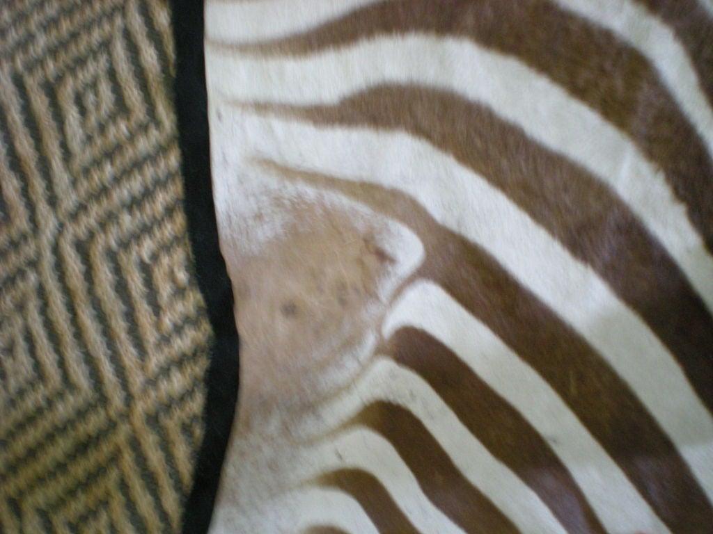 Vintage Zebra Rug 3