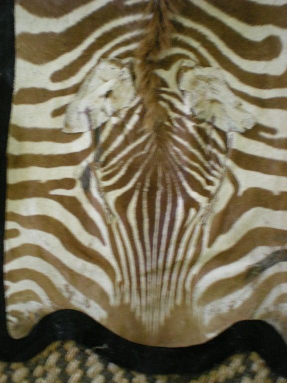 Vintage Zebra Rug At 1stdibs