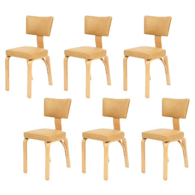 6 Thonet Dining Chairs At 1stdibs