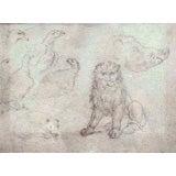 Studies Of A Lion, Boar, Dog And Eagles, Stefano Della Bella