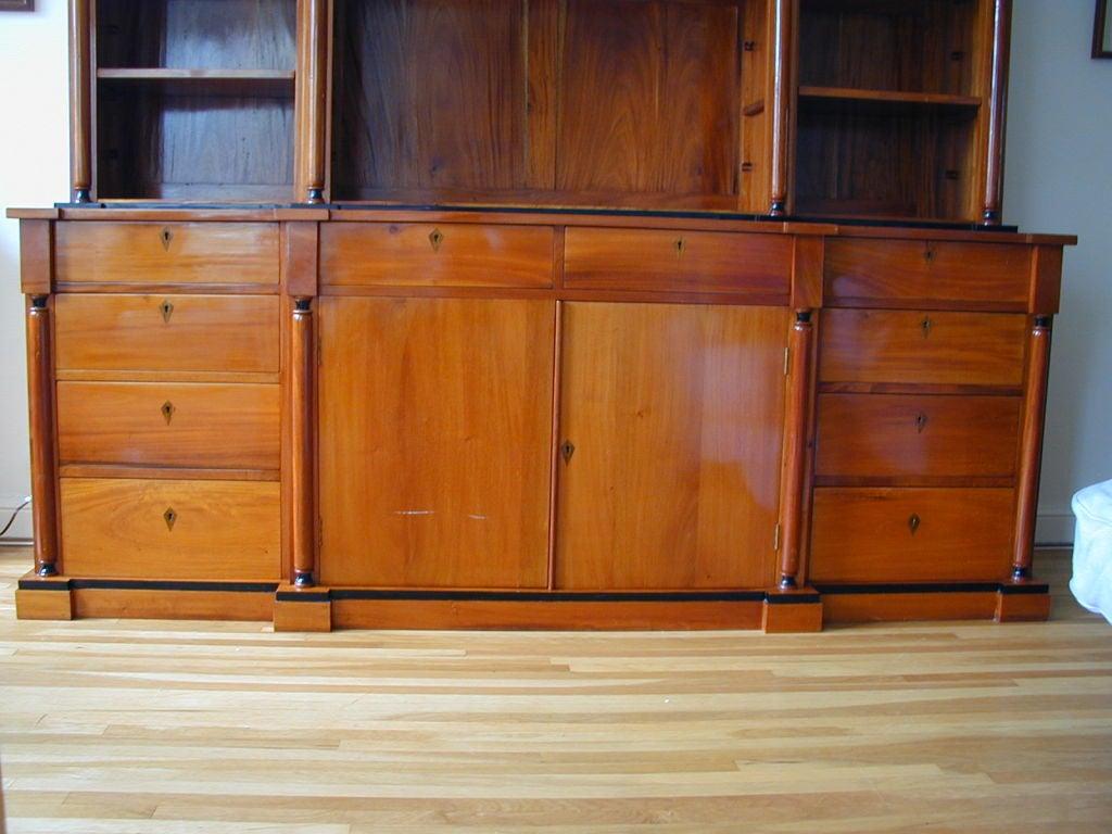German 19th Century Biedermeier Ebonized Birch Breakfront Bookcase For Sale