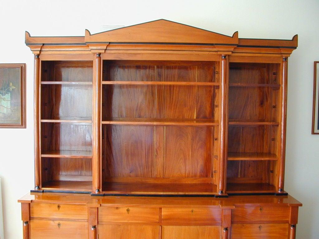19th Century Biedermeier Ebonized Birch Breakfront Bookcase For Sale 1