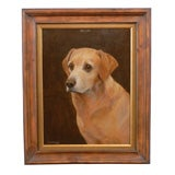 1920s Oil on Board Animal Painting of a Labrador Signed by F.M. Hollams