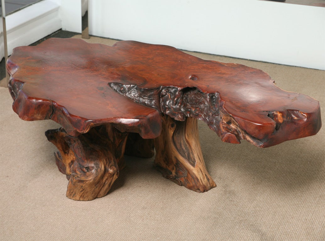 Large 1970 39 S Root Wood Lacquered Coffee Table At 1stdibs
