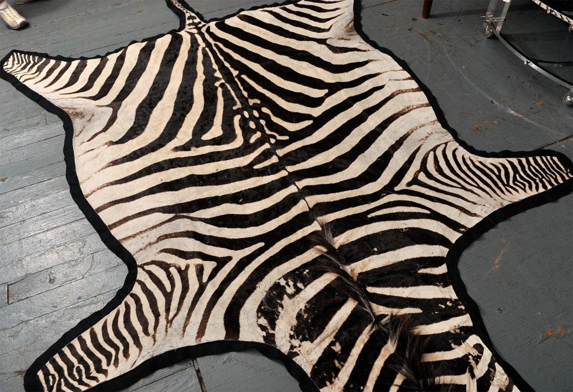 Zebra Skin Rug At 1stdibs