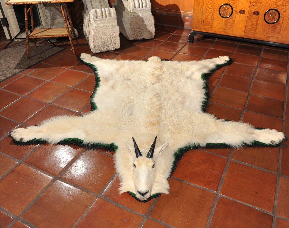 Mountain Goat Skin Rug At 1stdibs