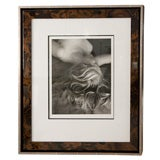 Framed Silver Print from Original Negative by Imogen Cunningham