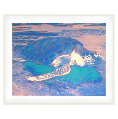 Turtle Screenprint by Andy Warhol (signed and numbered)