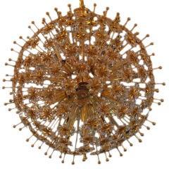 Austrian Dandelion Sputnik Light