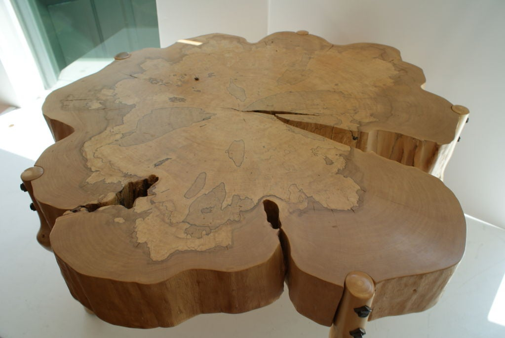 David N. Ebner, Spalted Maple Wood and Sassafras Coffee Table 1