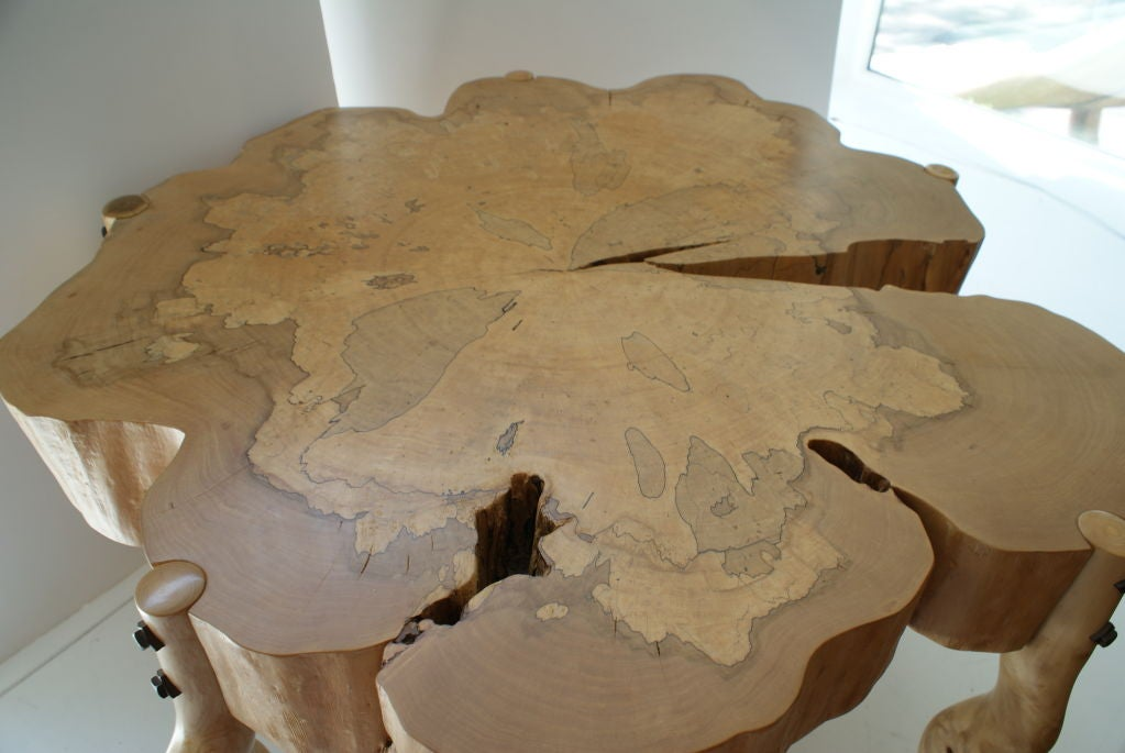 David N. Ebner, Spalted Maple Wood and Sassafras Coffee Table In New Condition In Bellport, NY