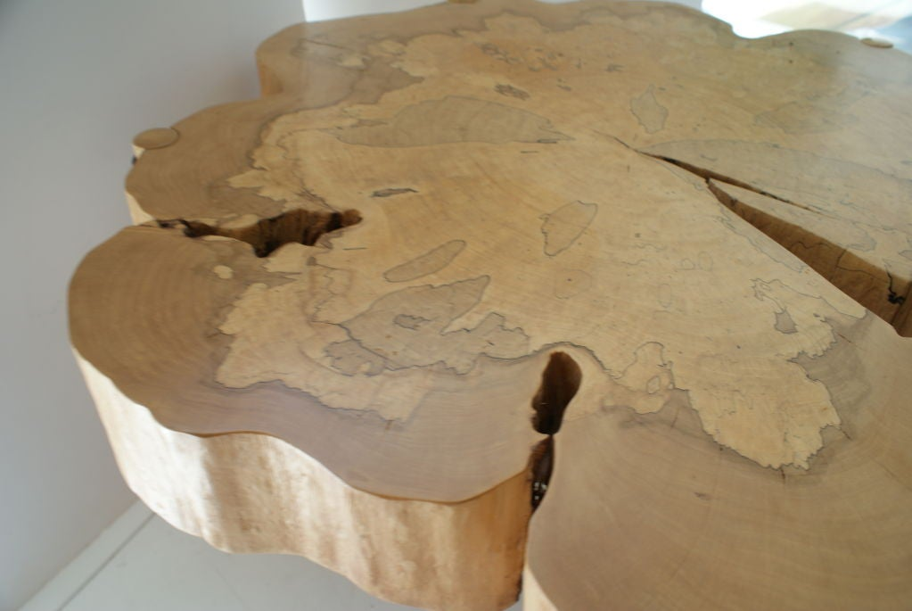 Hand-Crafted David N. Ebner, Spalted Maple Wood and Sassafras Coffee Table