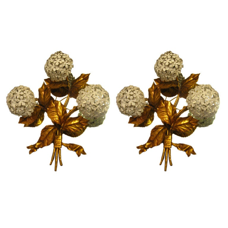 Pair of Hydrangea Sconces