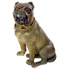 Terra Cotta Bulldog