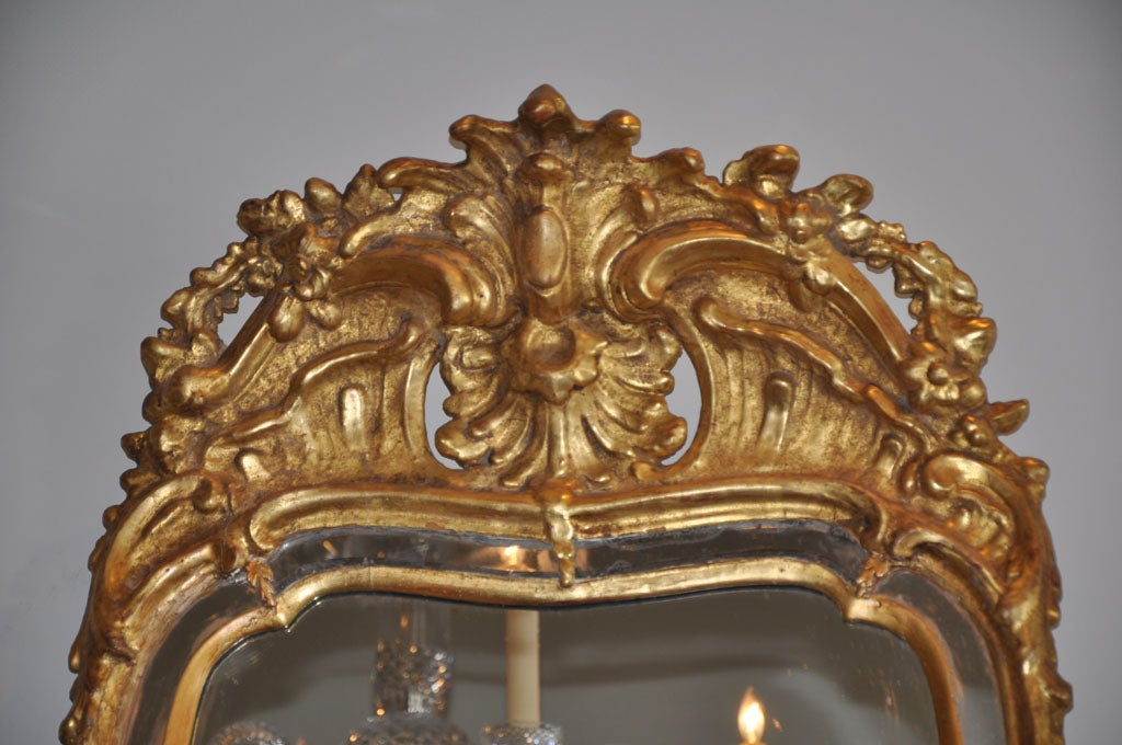 Wood 19th Century Swedish Rococo Giltwood Mirror For Sale