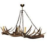 Deer Horn Chandelier