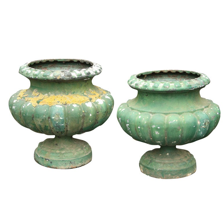 Pair of Painted Cast Iron Tazza Style Urns