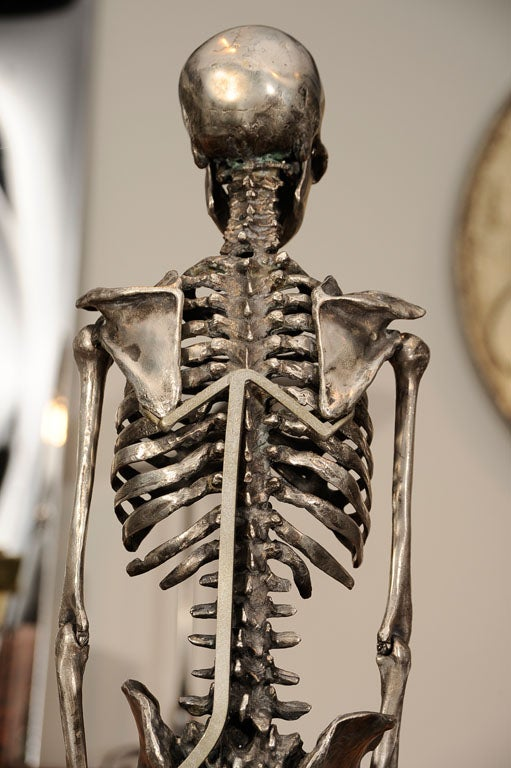 Articulated Silvered Bronze Anatomically Correct Skelton For Sale 2