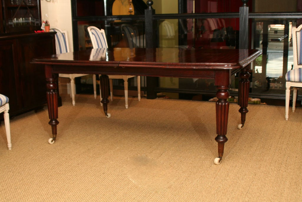 An exceptional William IV Rich mahogany extending dining table with turned and fluted legs on white porcelain castors