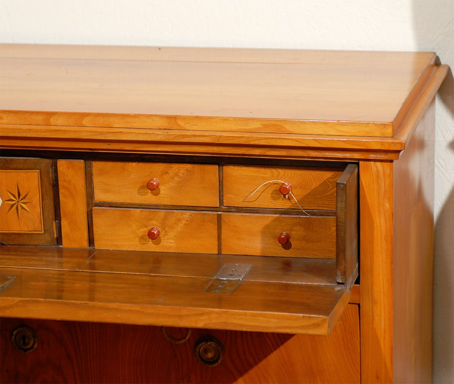 19th Century Swedish Period Karl Johan Butler's Desk For Sale 1