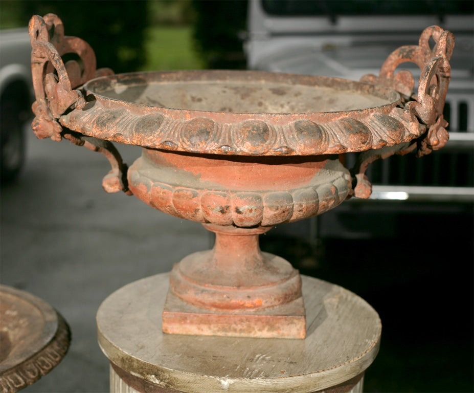 Tazza style urns with highly decorative handles and an orange painted patina