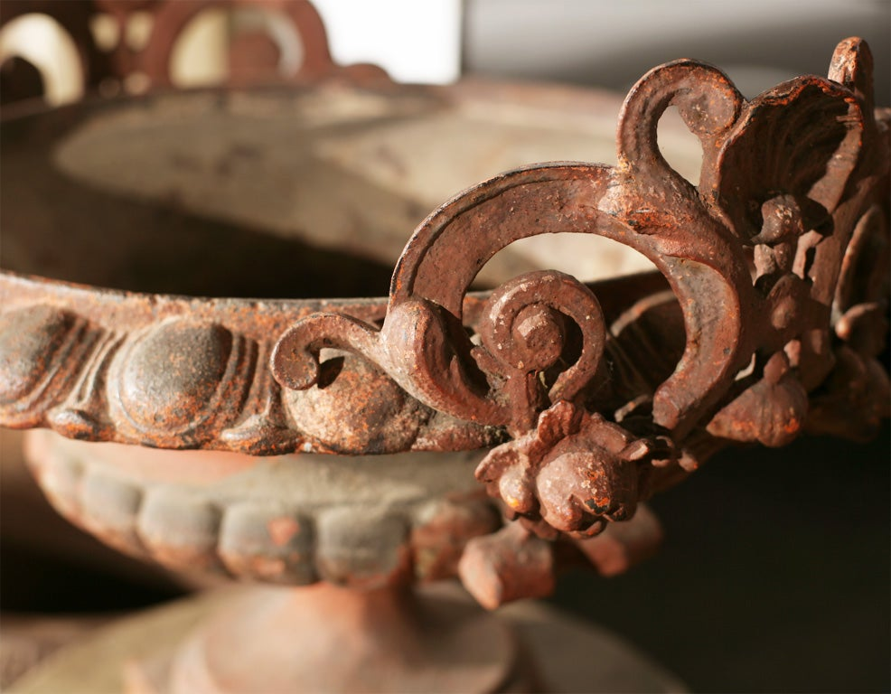 19th Century Pair of Ornate Cast Iron Garden Urns For Sale