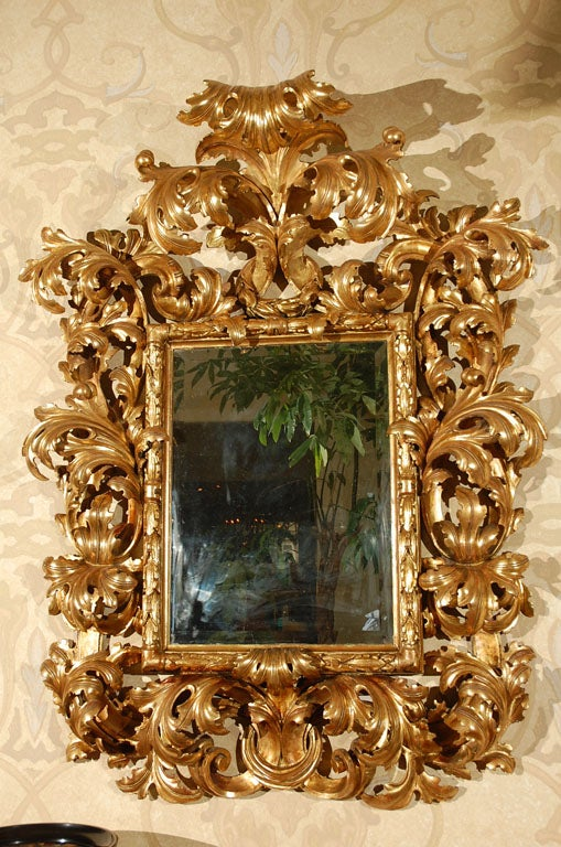 Monumental 18th Century Florentine Rococo Gilded Mirror At