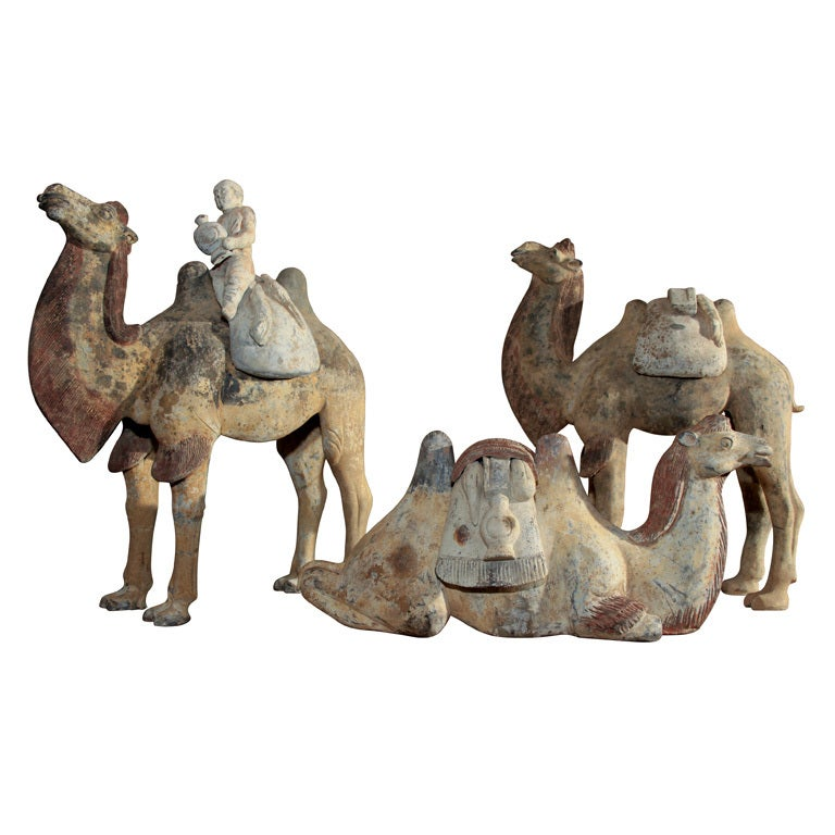 Chinese Tang Dynasty Painted Pottery Camels At 1stdibs